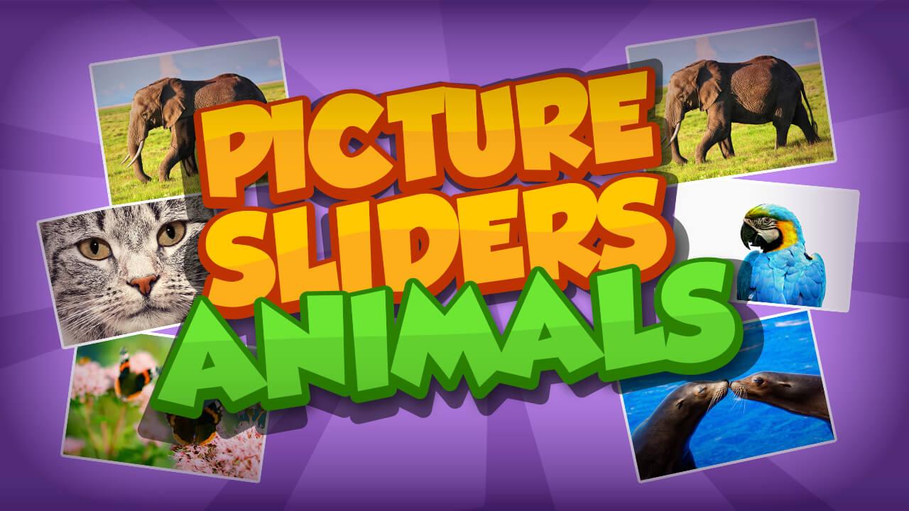 صورة الحيوانات المتزلج