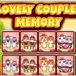 ذاكرة الأزواج الجميلة