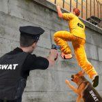 سجن البقاء على قيد الحياة استراحة الهروب