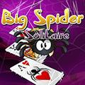 سوليتير العنكبوت الكبير